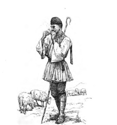 Greek Shepherd